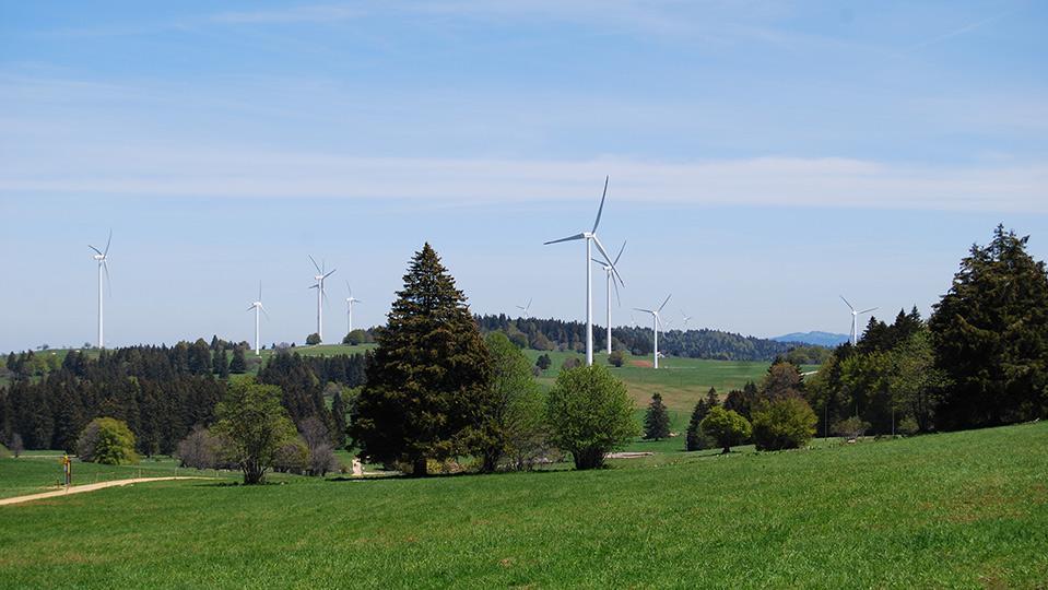 9 Windkraftanlagen in Hügellandschaft mit Bäumen